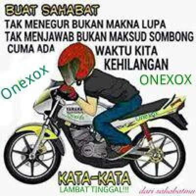 Apis Onexox
